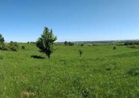 Большая Даниловка,Харьковская область,Земельный участок,Большая Даниловка,1151
